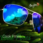 Cook-Pines-copy