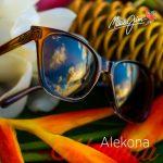 mj-11215-b2b-social-media-posts-612x612-alekona